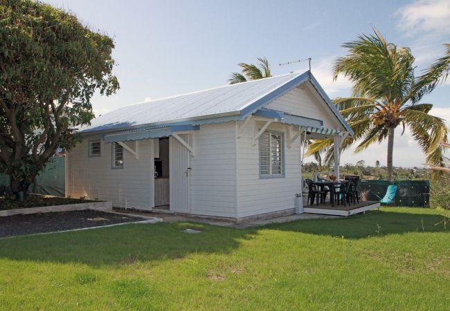 Bungalow en Capesterre-Belle-Eau - T3 Bleu des îles - CAPESTERRE-BELLE-EAU
